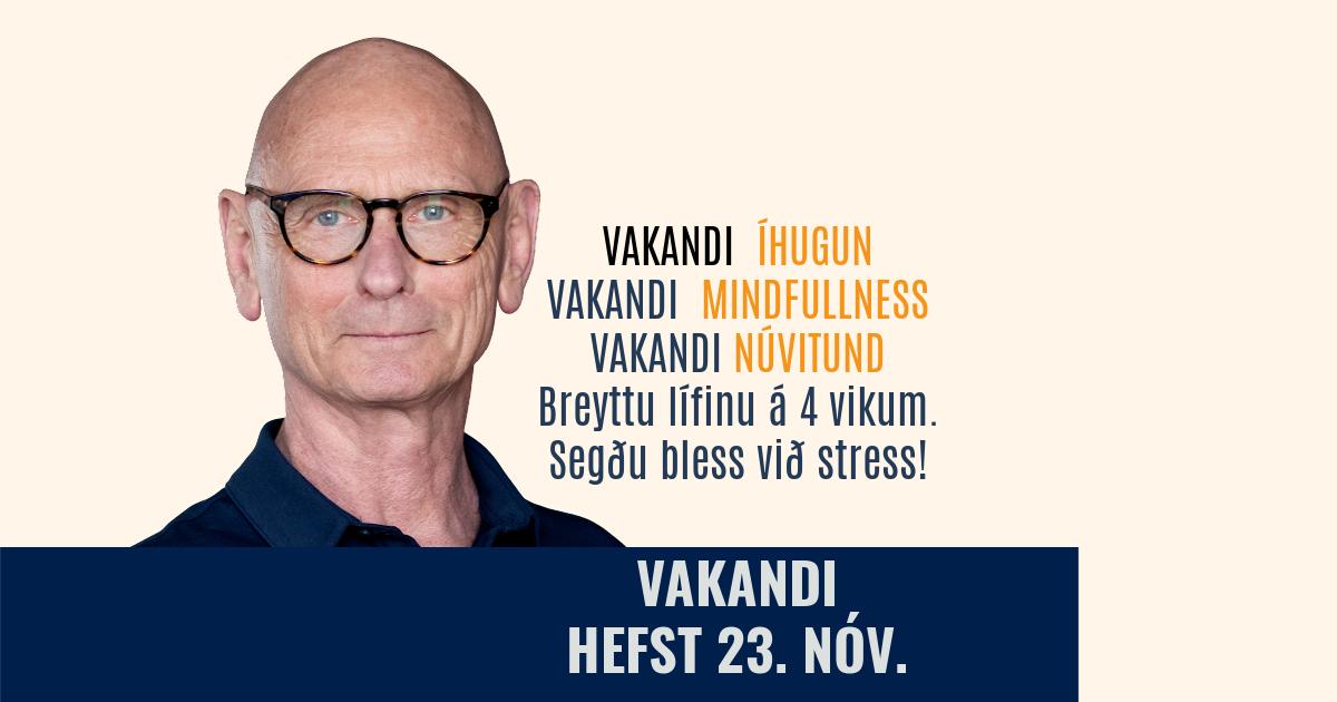 vakandi, netnámskeið, 23. nóvember. rys.is